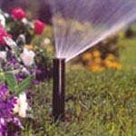 Grass and Shrub Bed Spray Heads
